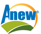 Anew Logo w R trademark